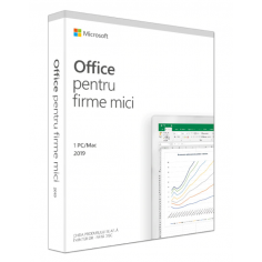 LIC FPP OFFICE 2019 HOME AND BUSIN RO P6 MICROSOFT