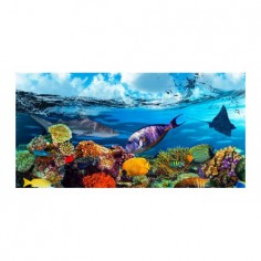 Panou bucatarie, protectie plita, aragaz, antistropire, print UV model Pesti in Ocean 2  120x60 cm Decoglass