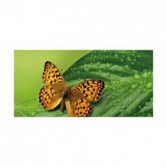 Panou bucatarie, protectie plita, aragaz, antistropire, print UV model Fluture Tropical 120x60 cm Decoglass