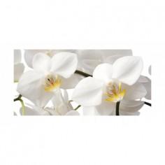 Panou bucatarie, protectie plita, aragaz, antistropire, print UV model Phalaenopsis Stuartiana 60x50 cm Decoglass