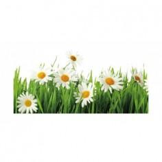 Panou bucatarie, protectie plita, aragaz, antistropire, print UV model Flori de Musatel 120x60 cm Decoglass