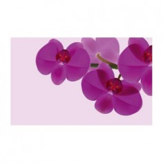 Panou bucatarie, protectie plita, aragaz, antistropire, print UV model 3 Orhidee Violet 100x50 cm Decoglass