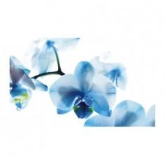 Panou bucatarie, protectie plita, aragaz, antistropire, print UV model Orhidee Albastra 60x60 cm Decoglass