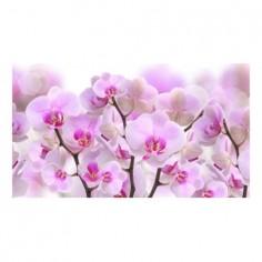 Panou bucatarie, protectie plita, aragaz, antistropire, print UV model Orhidee Roz 1 125x50 cm Decoglass