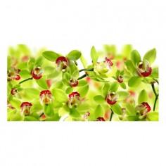 Panou bucatarie, protectie plita, aragaz, antistropire, print UV model Orhidee cu Petale Verzi 90x60 cm Decoglass