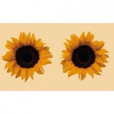 Panou bucatarie, protectie plita, aragaz, antistropire, print UV model 2 Floarea Soarelui 60x60 cm Decoglass