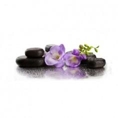 Panou bucatarie, protectie plita, aragaz, antistropire, print UV model Orhidee 57 125x50 cm Decoglass