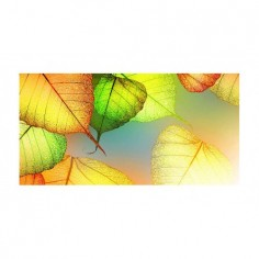 Panou bucatarie, protectie plita, aragaz, antistropire, print UV model Frunze Colore 125x50 cm Decoglass