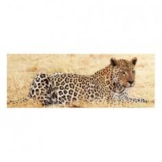 Panou bucatarie, protectie plita, aragaz, antistropire, print UV model Animal Pradator 60x60 cm Decoglass