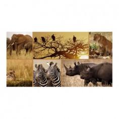 Panou bucatarie, protectie plita, aragaz, antistropire, print UV model Cadre Animale Salbatice 60x60 cm Decoglass
