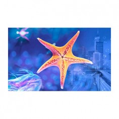 Panou bucatarie, protectie plita, aragaz, antistropire, print UV model Stea de Mare 60x60 cm Decoglass